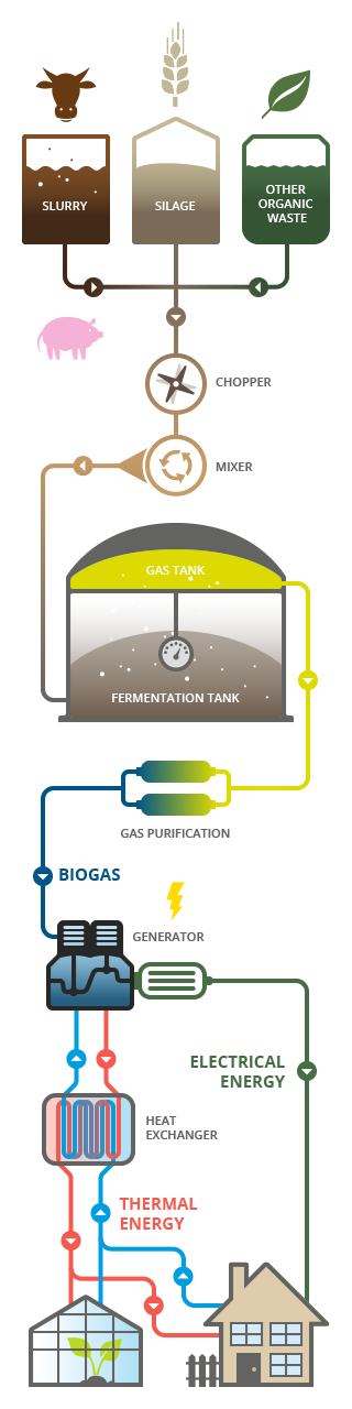 Diagramm of a Biogas-Plant